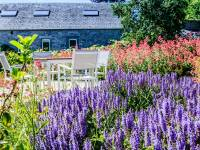 le jardin fin juin
