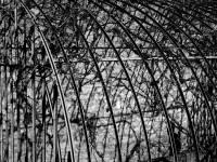 vestiges de l'ancienne serre